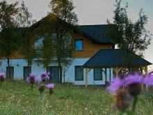 Accommodation Telciu, Maramureș Landscape B&B