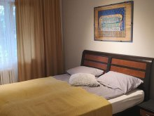 Accommodation Sovata Ski Slope, Green Apartment
