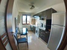 Accommodation Pupezeni, Musat Apartment