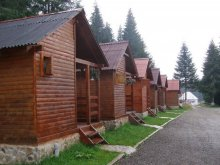 Bed & breakfast Romania, Popas Guesthouse