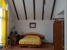 Accommodation Saciova, Condor B&B