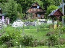 Accommodation Drăușeni, Katalin Chalet