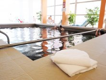 Hotel Hajdú-Bihar megye, Hotel Hőforrás