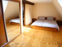 Accommodation Sibiu county, Dioniss Apartment