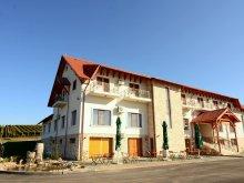 Apartament Chegea, Pensiunea Kemsilvanum