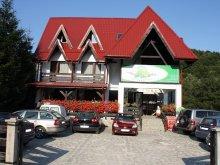 Pensiune județul Prahova, Pensiunea Floarea Soarelui