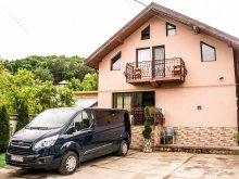 Accommodation Pleșcoi, David Guesthouse