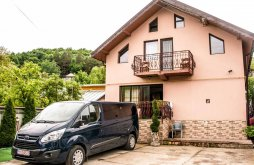 Accommodation Ungureni (Vadu Săpat), David Guesthouse