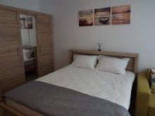 Accommodation Râmnicu de Sus, Felicia Apartments
