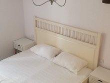 Accommodation Sibiu county, Chic Apartment