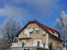 Cazare Ludányhalászi, Casa de oaspeți Panoráma