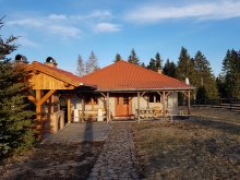 Accommodation Capalnita (Căpâlnița), Földvár Guethouse