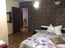 Apartament Punghina, Pensiunea Exotic