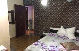 Apartman Craiova Nemzetközi Repülőtér közelében, Exotic Panzió
