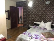 Apartment Oltenia, Exotic B&B