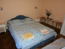 Accommodation Northern Great Plain, Erika Guesthouse