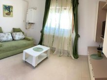 Accommodation Romania, Green Apartment