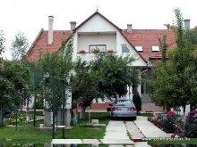 Szállás Csíkborzsova (Bârzava), Tichet de vacanță, Európa Panzió