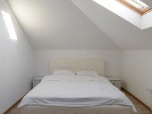 Accommodation Țigănești, Exquisite Ambient Apartment