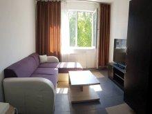 Accommodation Boanța, Cozy Apartments
