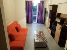 Accommodation Boanța, Beautiful Place Apartment