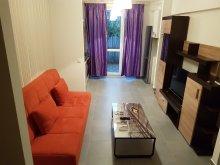 Accommodation Valea Lupului, Beautiful Place Apartment