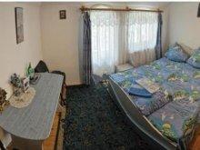 Accommodation Rășinari, Phoenix Guesthouse