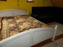 Accommodation Siculeni, Szabo Chalet