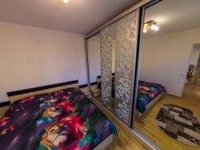 Accommodation Cornești (Mihai Viteazu), Mega Apartment