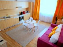 Accommodation Timiș county, Spring Apartment