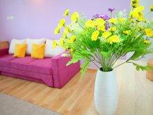 Apartament Ruginosu, Apartament Spring