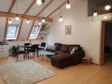 Apartman Scheiu de Sus, Leisure Apartments