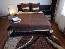 Accommodation Tritenii-Hotar, Aurora Guesthouse