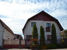 Accommodation Corvin Castle, Nisztor Guesthouse