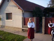 Casă de oaspeți Aiud, Pensiunea Szabó