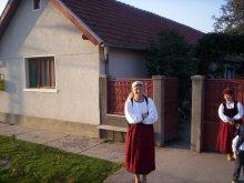Casă de oaspeți Mustești, Pensiunea Szabó