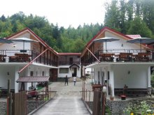 Apartment Ocnele Mari Swimming Pool, Bâlea Transfăgărășan Accommodation Complex