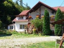 Panzió Szeben (Sibiu) megye, Tichet de vacanță, Bâlea Panzió