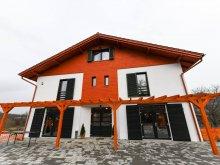 Accommodation Botiz, Tilkós B&B