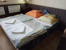 Pensiune Veszprém, Pensiunea și Camping Katica