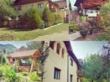 Accommodation Câmpulung Moldovenesc, La Muncel B&B