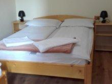 Accommodation Ocna de Sus, Floarea Guesthouse