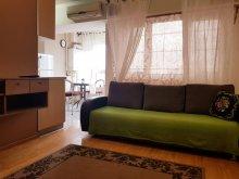 Cazare Mânăstirea Rătești, Studio Leisure Apartments