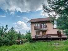 Vacation home Vlăhița, Nerling Vacation Home