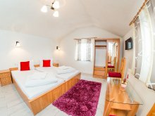 Bed & breakfast Mureş county, Tichet de vacanță, Sanda B&B