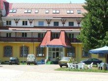 Hotel Săldăbagiu Mic, Hotel Iadolina