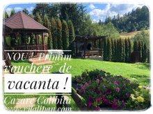 Accommodation Bistrița-Năsăud county, Tichet de vacanță, Lipan House