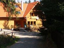 Apartament Nicolești (Frumoasa), Pensiunea Mofeta