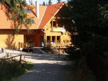Szállás Csíkszentkirály (Sâncrăieni), Tichet de vacanță, Mofetta Panzió