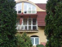 Accommodation Nagyfüged, Villa Terézia Apartment